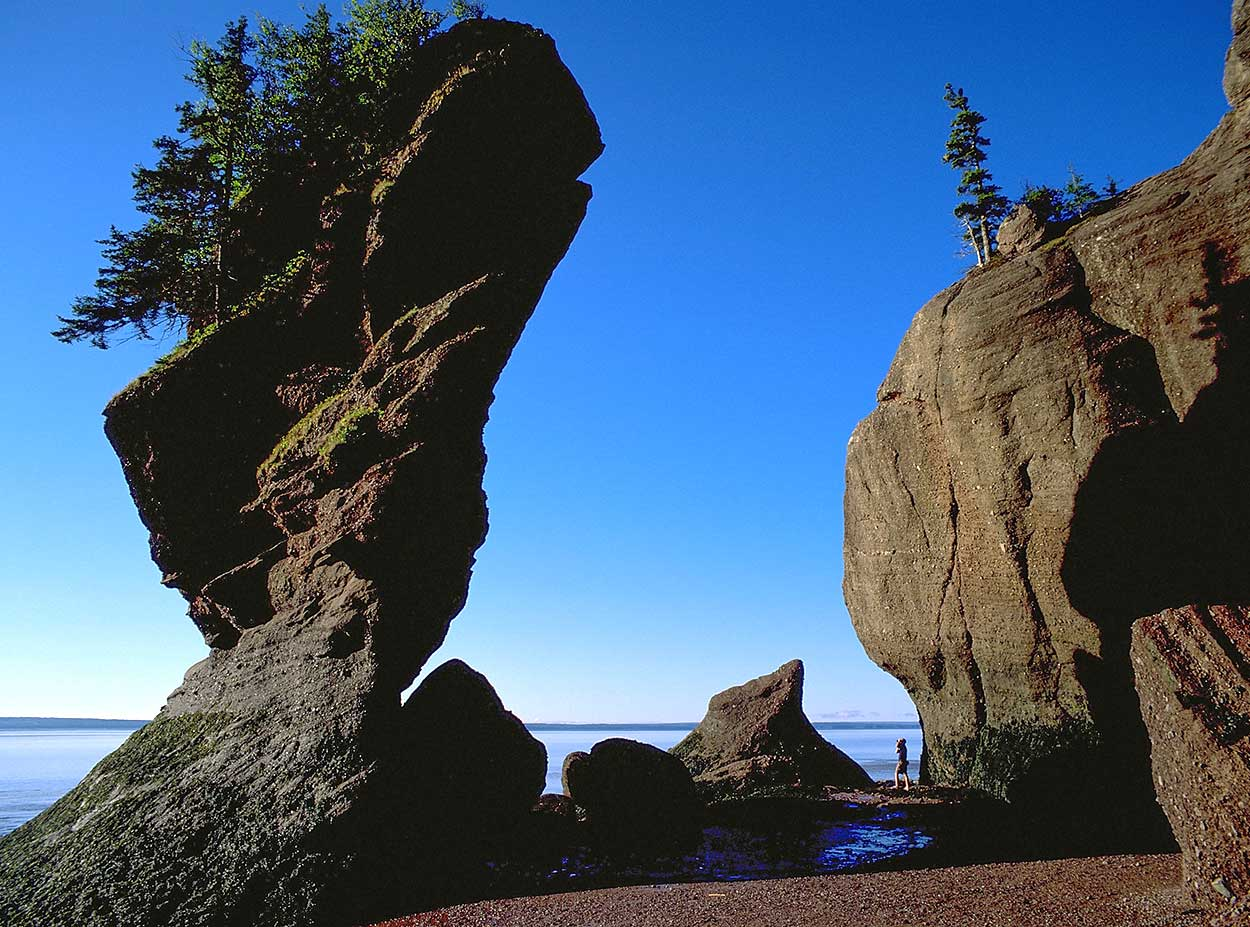 Low tide at the Hopewell Rocks at Hopewell Cape, New Brunswick